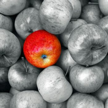 red apple stands out